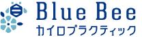 Blue Bee ブルービーカイロプラクティック大手門